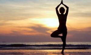 mind-body-wellness